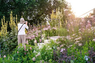 Kienbergpark, Berlin – Foto: Nikolai Benner