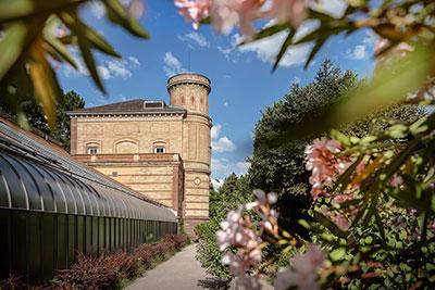 Botanischer Garten Karlsruhe, Staatl. Schlösser und Gärten Baden-Württemberg - Foto: Günther Bayerl