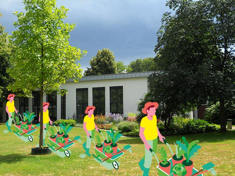 201008_Essen_Bildungszentrum-Gartenbau_Staudenflaeche--Foto-Martin-Neumann--01-1
